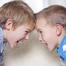 Por que irmãos brigam?